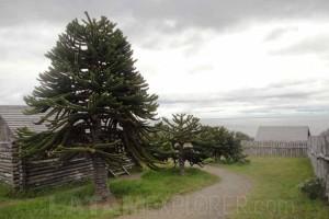 Fuerte Bulnes - Punta Arenas, Chile