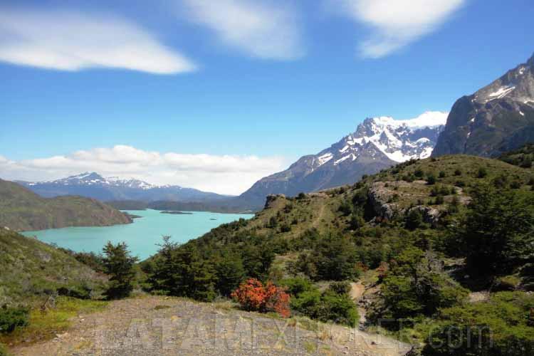 Camino a Los Cuernos - Torres del Paine, Chile